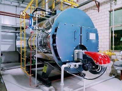 蒸汽锅炉出口
